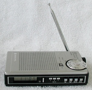 Sanyo RPM-6800